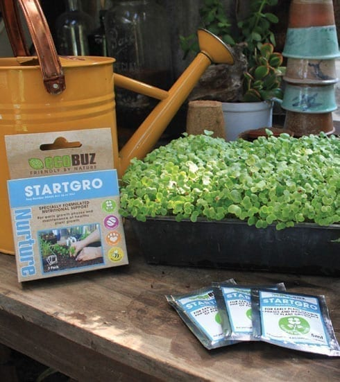 EcoBuz Plant Health